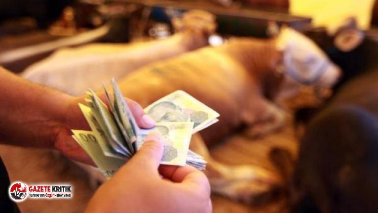 Türk Lirası eriyor ! Dünyanın en çok değer kaybeden 2. parası TL !