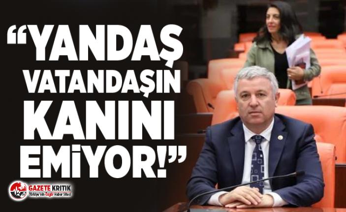CHP'Lİ ÇETİN ARIK'TAN İHALE TEPKİSİ,...