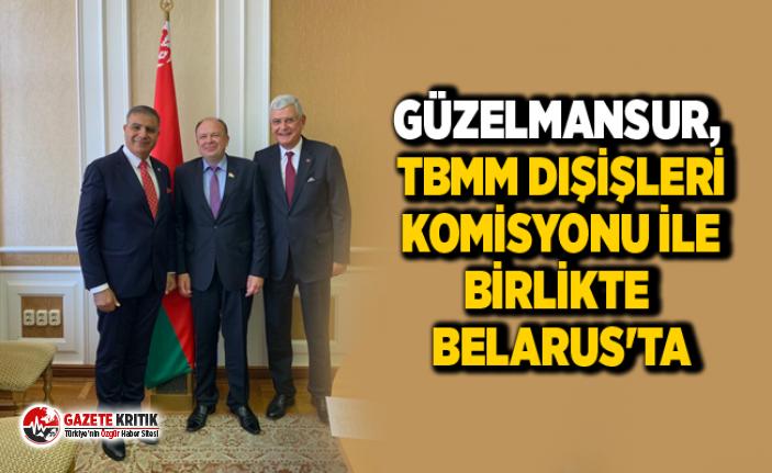 CHP'Lİ GÜZELMANSUR, TBMM DIŞİŞLERİ KOMİSYONU...