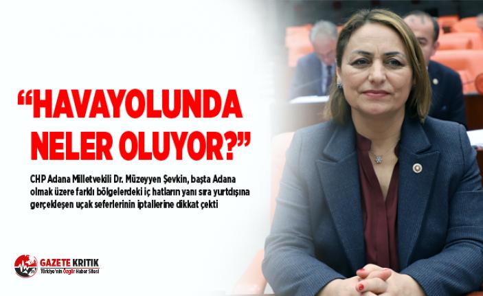 """CHP'li Müzeyyen Şevkin:""""Uçak sefer sayıları..."""