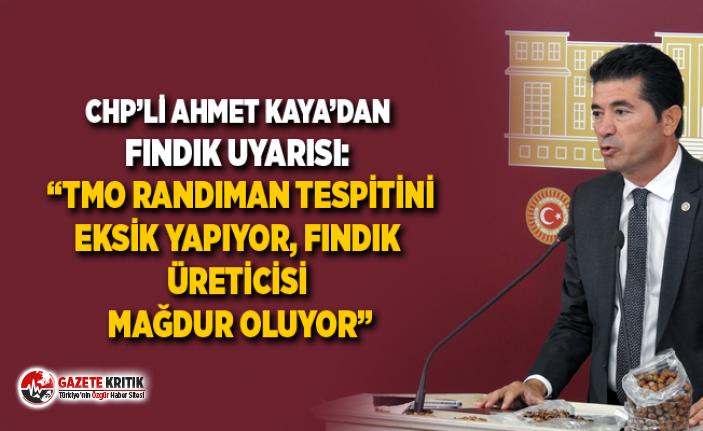 "CHP'Lİ AHMET KAYA'DAN FINDIK UYARISI: ""TMO..."