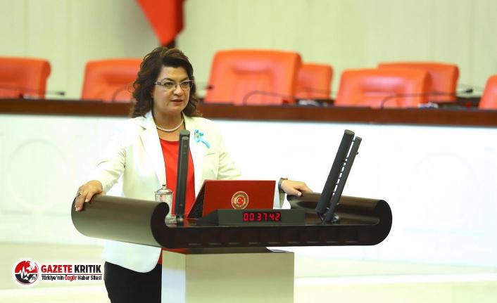 CHP'Lİ ŞAHİN: İFLAS EDEN MÜTEAHHİTLER VE AZALAN...