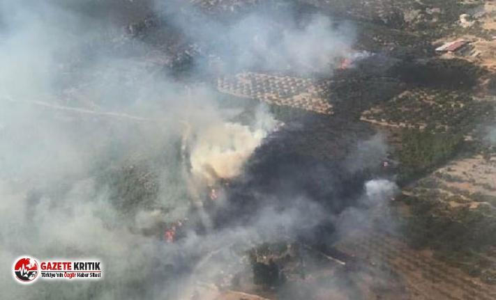 Foça'da besi çiftlikleri yakınında yangın