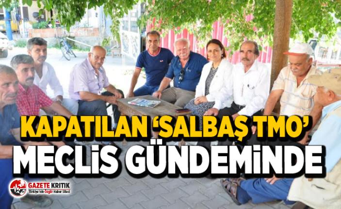 Müzeyyen Şevkin:Salbaş'taki TMO, neden kapatıldı?