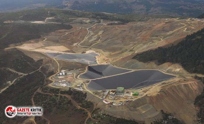 On binlerce ağaç kesildi, siyanür çukurları açıldı; bölge halkı Madra Dağı'ndaki altın madeninden şikâyetçi