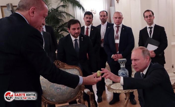 Putin'in dondurmasına karşılık Erdoğan'dan incir