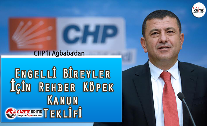CHP'li Ağbaba'dan Rehber Köpeklerle İlgili...