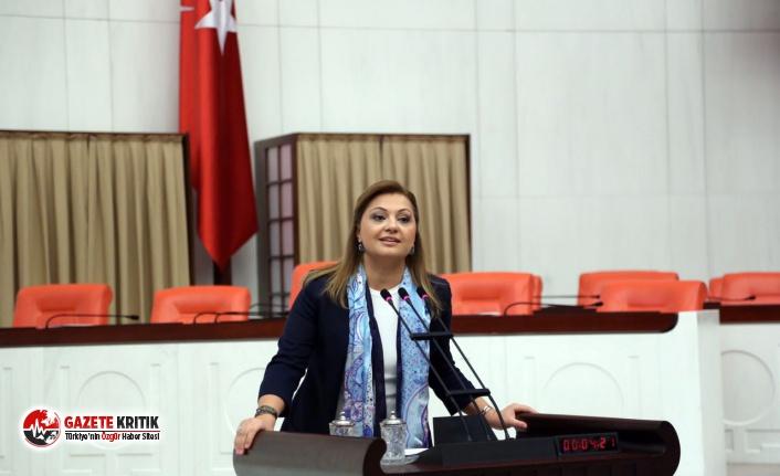 CHP'li Burcu Köksal'dan Tarım ve Orman Bakanı'na...