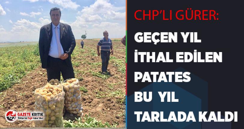CHP'li Gürer:Geçen yıl ithal edilen patates, bu yıl tarlada kaldı