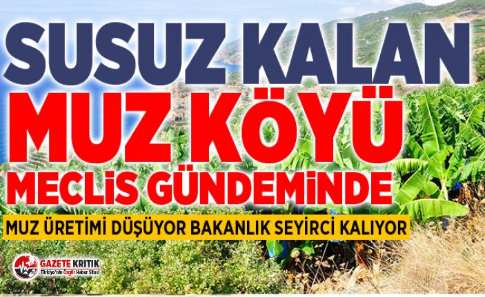CHP'Lİ ÖZER'DEN MUZ SORUSU