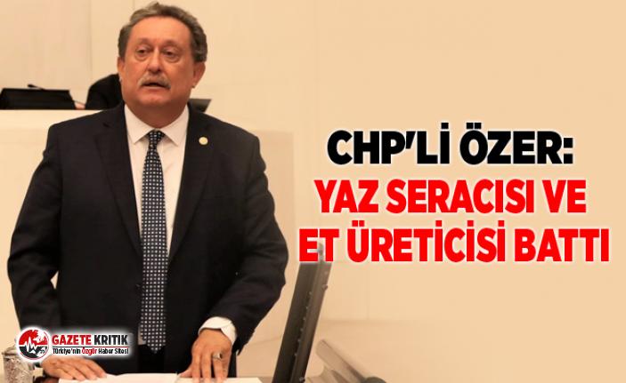 CHP'Lİ ÖZER: YAZ SERACISI VE ET ÜRETİCİSİ...