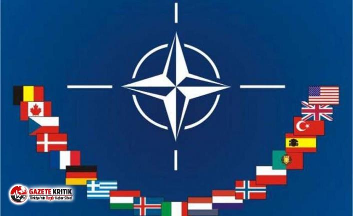 Fransa: Barış Pınarı Harekatı, NATO'nun...