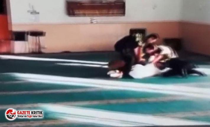 Hollanda'da camiye 'köpekli baskına'...