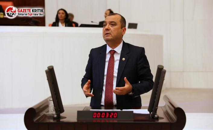 CHP'li Aygun: Süt Destekleme Priminde Seçim Oyunu Yapılmış