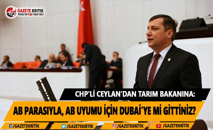 CHP'li Ceylan'dan Tarım Bakanına: AB Parasıyla, AB Uyumu İçin Dubai'ye Mi Gittiniz?