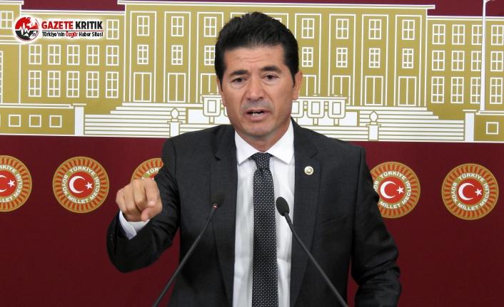 CHP'li Kaya: Araklı'da Doğa Katlediliyor