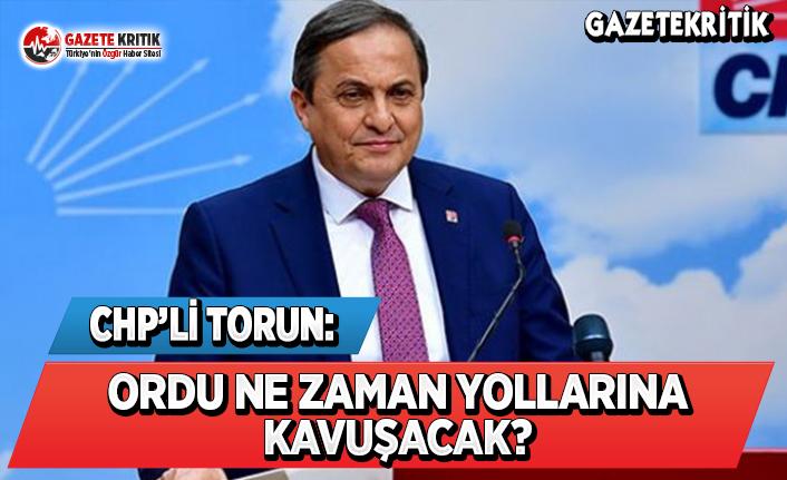 CHP'li Torun: Ordu Ne Zaman Yollarına Kavuşacak?