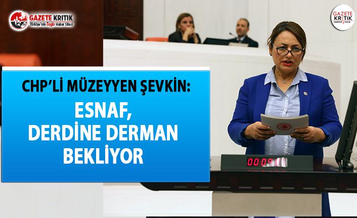 CHP'li Şevkin: Ekonominin Bel Kemiği Esnaf...