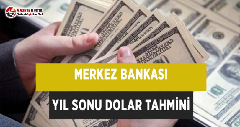 Merkez Bankası Yıl Sonu Dolar Tahmini
