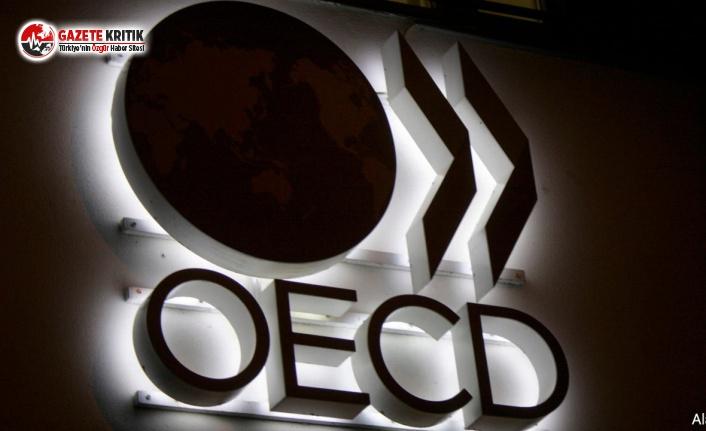 OECD, Türkiye İçin Kararını Tekrar Değiştirdi