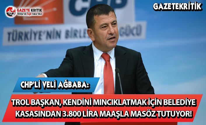 CHP'li Ağbaba: Trol Başkan Kendini Mıncıklatmak...