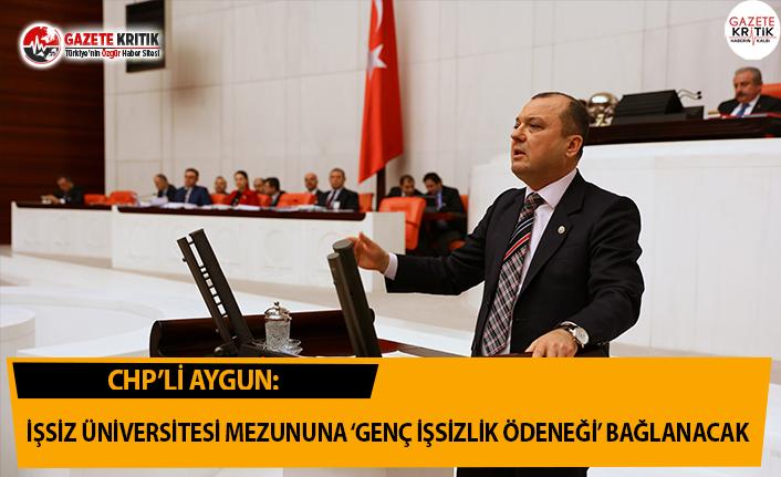 CHP'li Aygun: İşsiz Üniversite Mezununa 'Genç İşsizlik Ödeneği' Bağlanacak