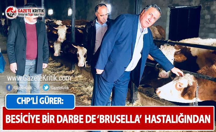 CHP'li Gürer: İnsana da Bulaşan 'Brusella'...