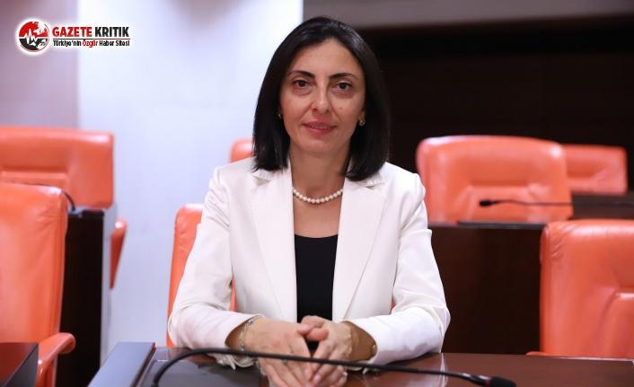 CHP'li Kayışoğlu: Bez Fiyatlarındaki Artış...
