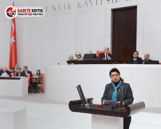 CHP'li Şahin: Engelli Raporları Keyfekeder...