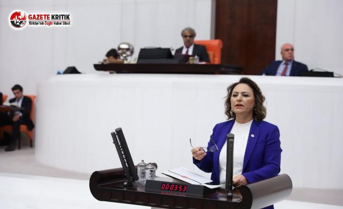 CHP'li Şevkin'den Fuat Oktay'a İcra, Borç...