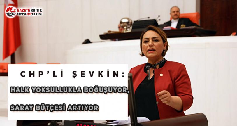 CHP'li Şevkin: Halk Yoksullukla Boğuşuyor, Saray Bütçesi Artıyor!