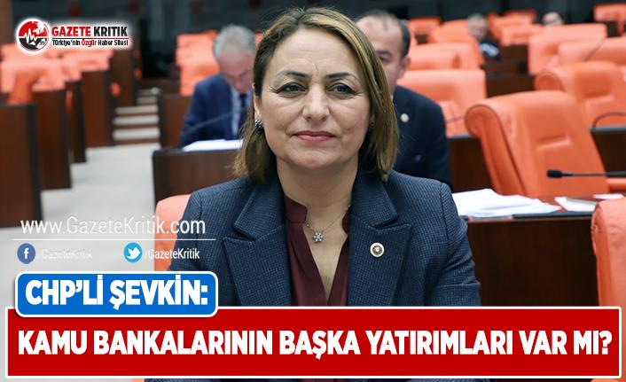 CHP'li Şevkin: Kamu Bankalarının Başka Yatırımları...