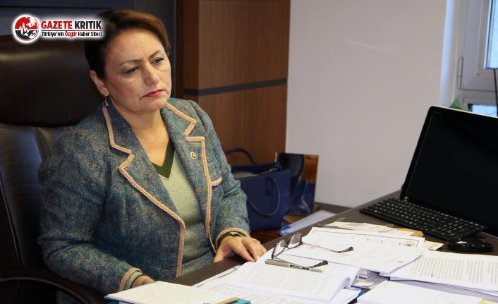 CHP'li Şevkin: Vatandaş; Aç Açıkta, Fabrikalar...