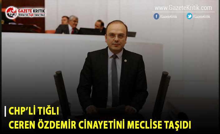 CHP'li Tığlı Ceren Özdemir Cinayetini Meclis...