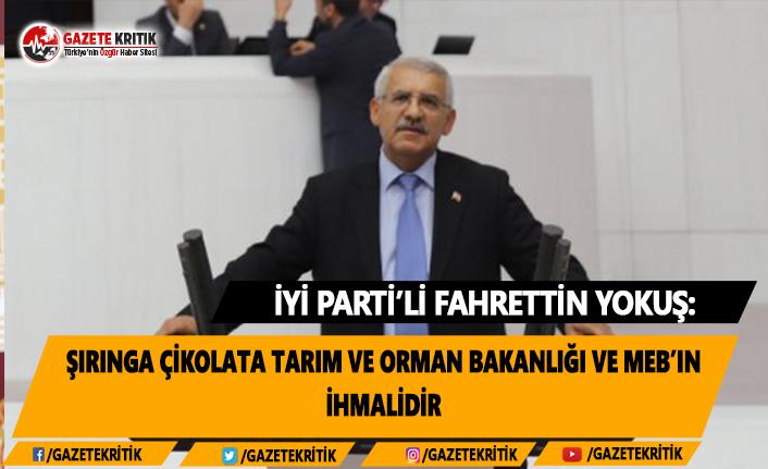 İYİ Parti'li Yokuş: Şırınga Çikolata Tarım...