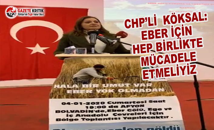 CHP'li Köksal: Eber için hep birlikte mücadele...