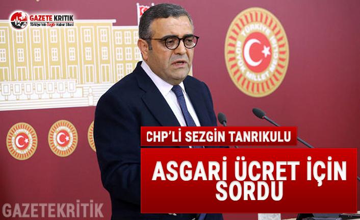 CHP'li Tanrıkulu Asgari Ücret İçin Sordu