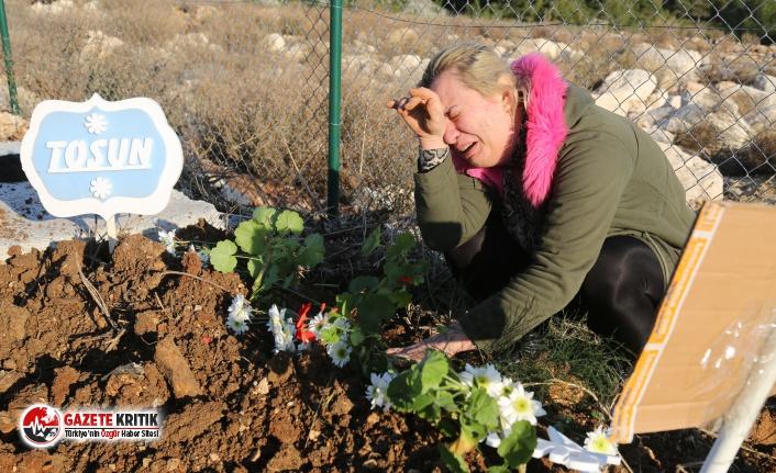 Depremde kalp krizi geçiren köpek hayvan mezarlığına gömüldü