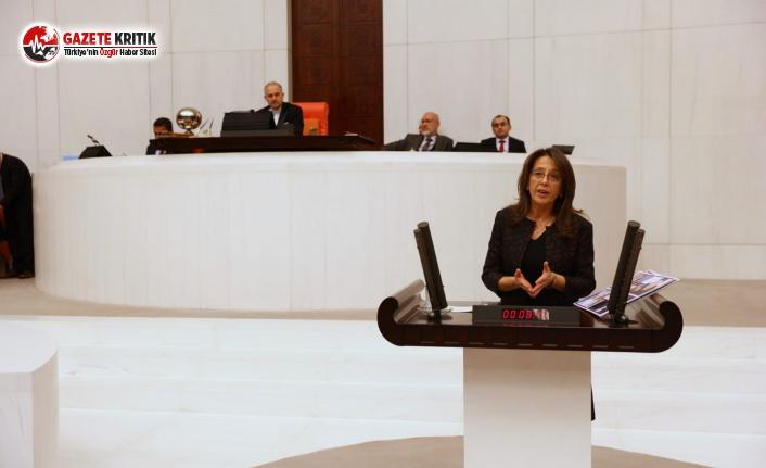 HDP'li Ersoy, Gülistan Doku'nun bulunması amacıyla İç İşleri Bakanlığı'na önerge verdi
