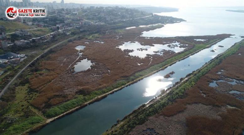 Kanal İstanbul güzergahında iş makineleri çalışmaya...
