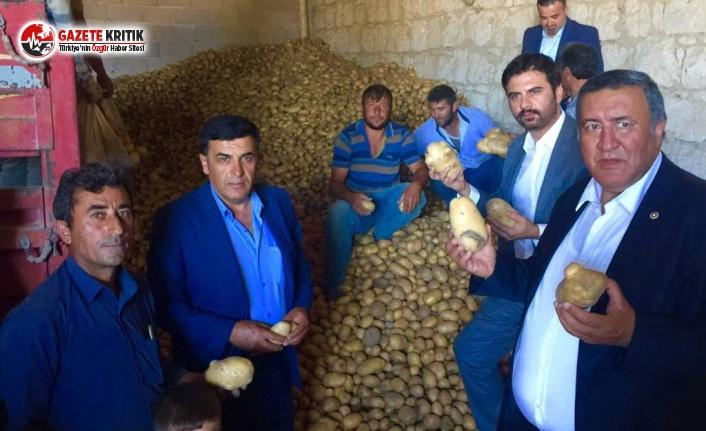 Patates ve soğan üreticisine darbe