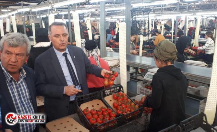 AKP'NİN TUTARSIZ DIŞ POLİTİKASI ÜRETİCİYİ VURUYOR