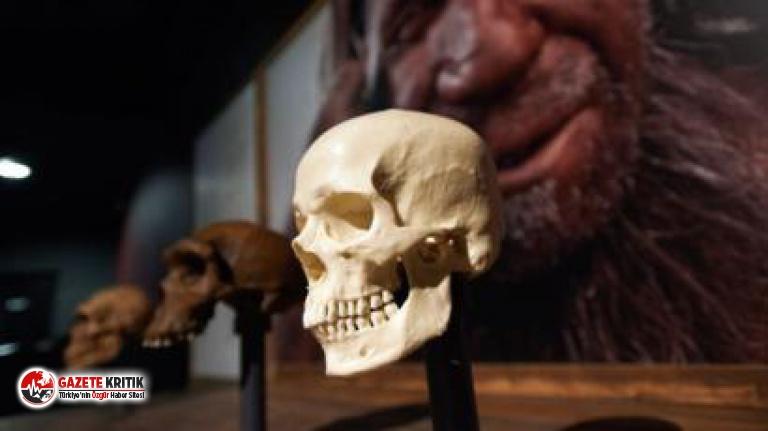 Batı Afrika'da 'hayalet' insan türüne ait bulgular ortaya çıktı
