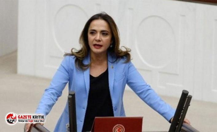CHP'li Gamze Akkuş İlgezdi : Atatürk'ün izini silmeye çalışanlara karşı mücadelemiz sürecek