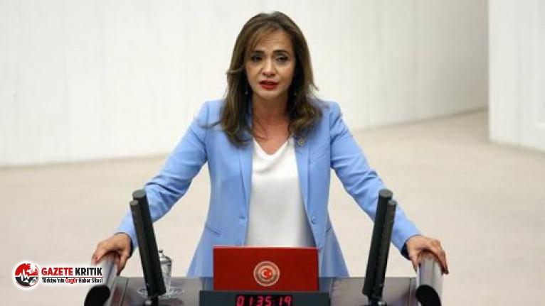 CHP'li İlgezdi: ''Türkiye'nin yüzde 15'ini fişleyecekler''