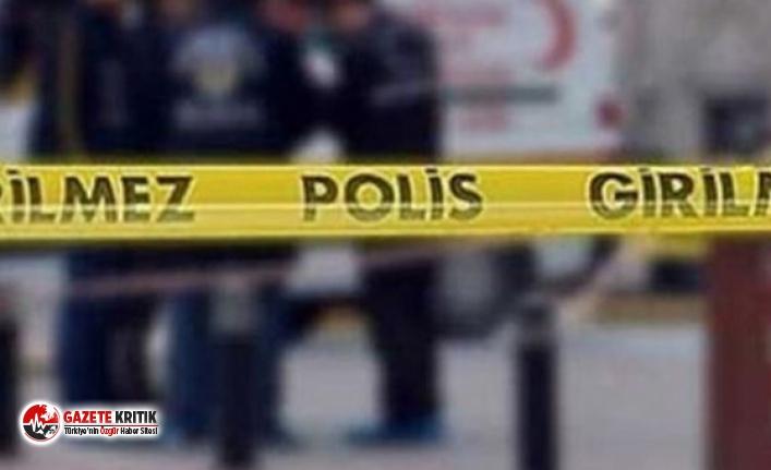Edirne'de feci ölüm! Kestiği ağacın altında kaldı