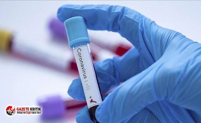 Bilim Kurulu üyesi Prof. Özlü: Koronavirüsler...