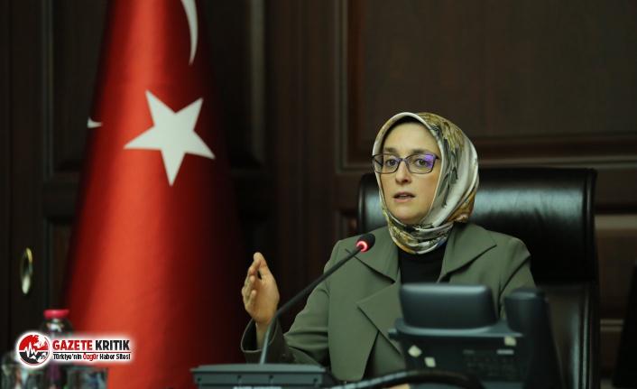 AKP Kadın Kolları Genel Başkanı'ndan Soylu açıklaması