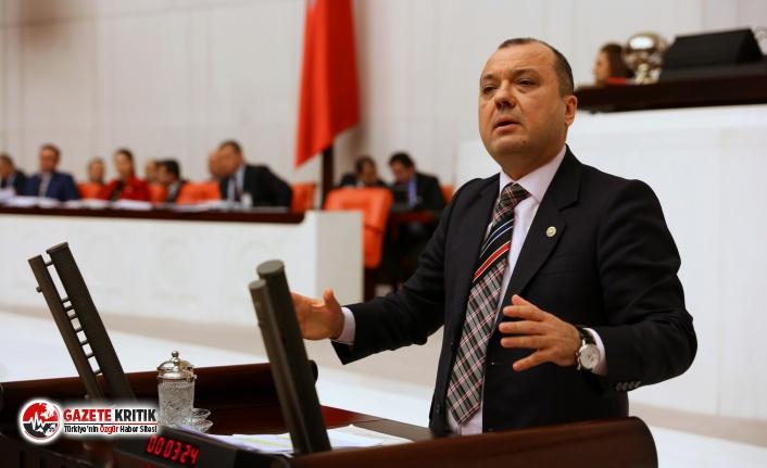 CHP'li Aygun'dan Sağlık Bakanı'na çağrı: Pandemi Çağında Veteriner Hekimlerin rolü artsın!