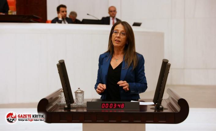 CHP'li Ersoy pandemi koşullarında halkı korumak için kanun teklifi verdi